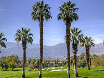 Estates at Desert Springs community